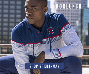 BOXLUNCH SHOP SPIDER-MAN