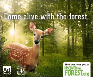 Come alive with the forest Find one near you at DISCOVER the Ad Council US FOREST.org
