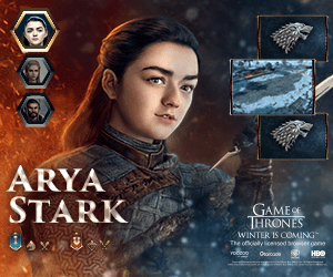 ARYA STARK GAME THRONES WINTER IS COMING The ofely icesed bser gone HBO yoco Gorcode